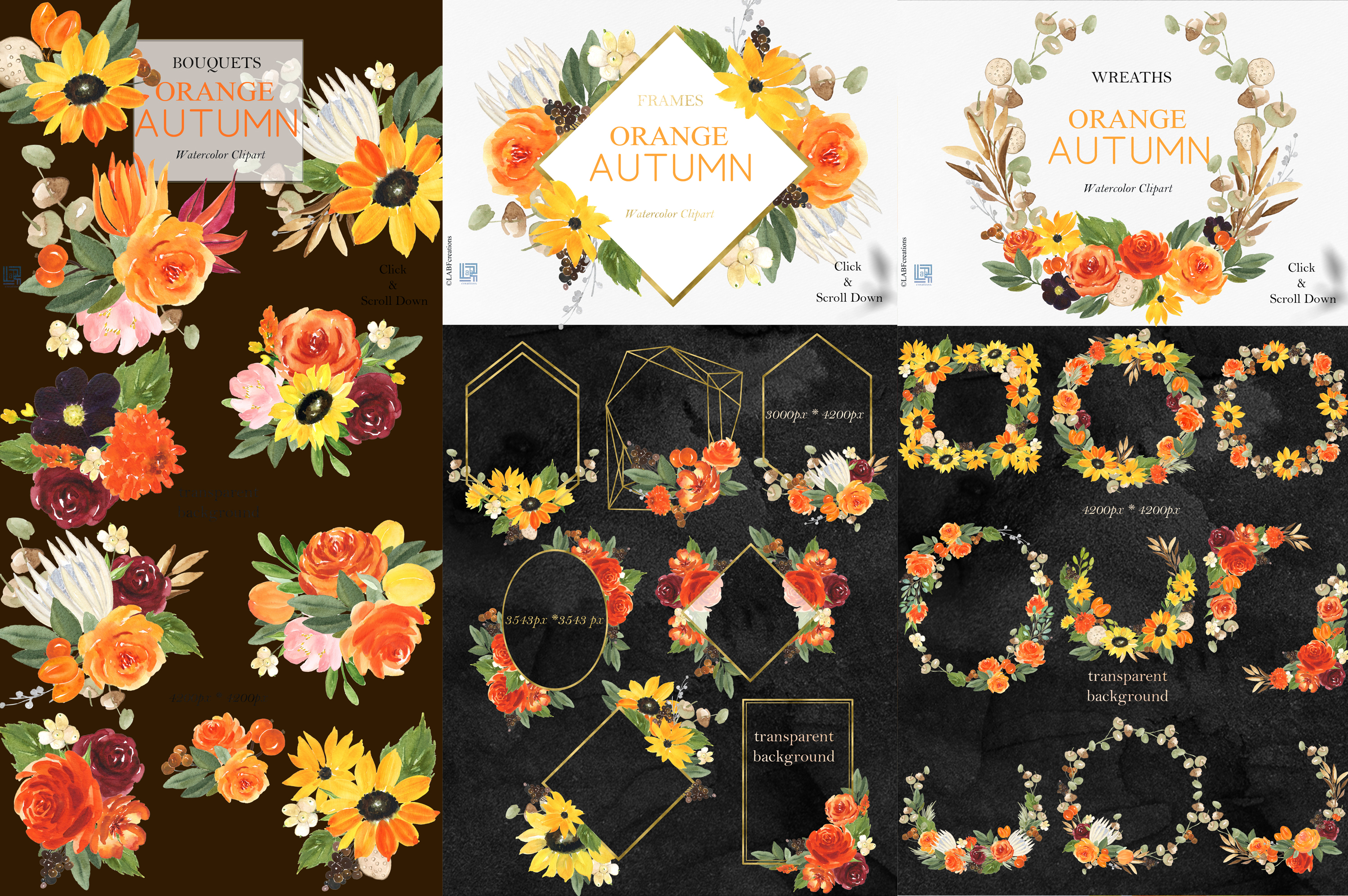Orange, red and burgundy autumn flowers collection. example image 2