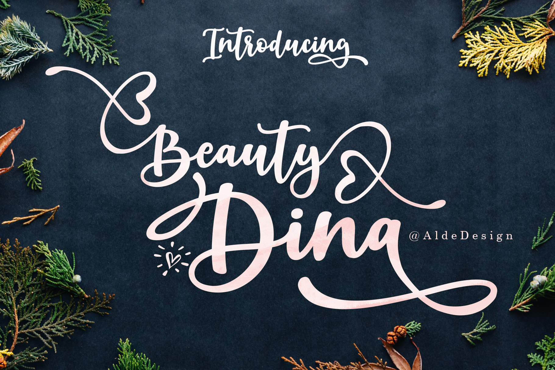 Beauty Dina | Beautiful Brush Script Font example image 1