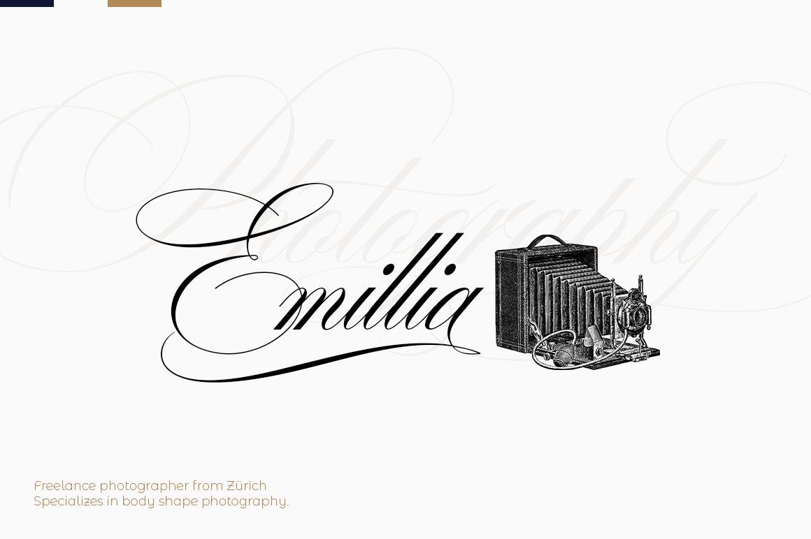 Desirable calligraphy example image 4