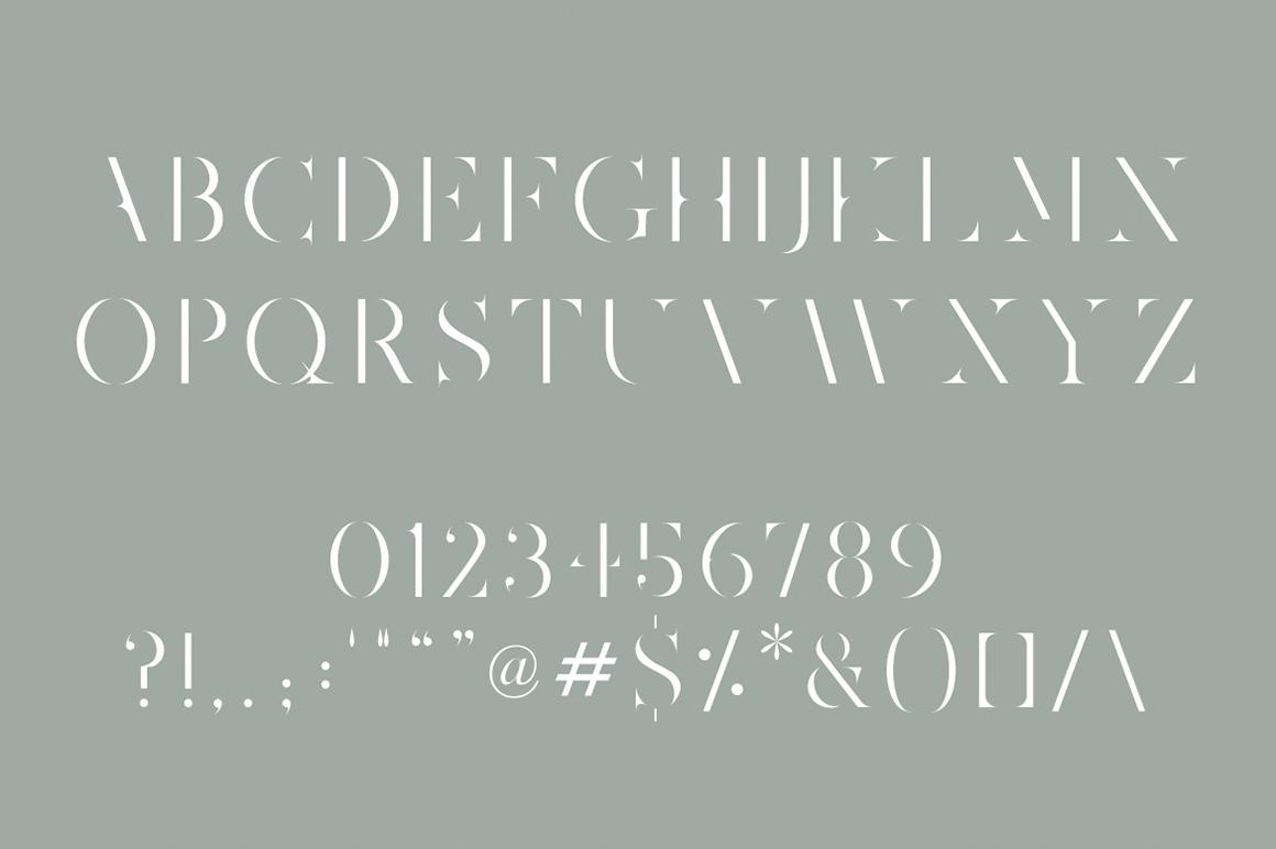 Joshua Tree | A Gorgeous Serif example image 2