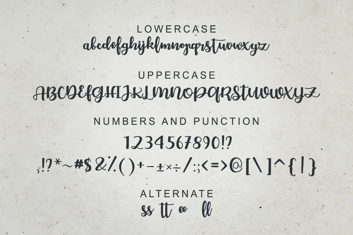 Chellion - Script font example image 5