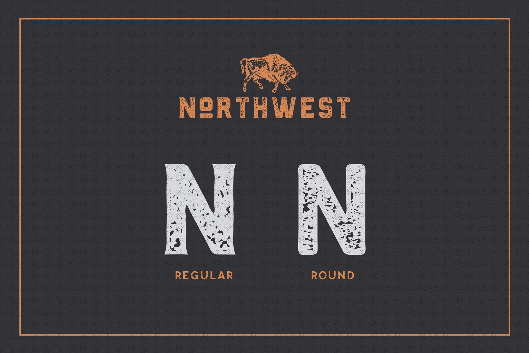 The Northwest - Textured Vintage Type Family example image 3