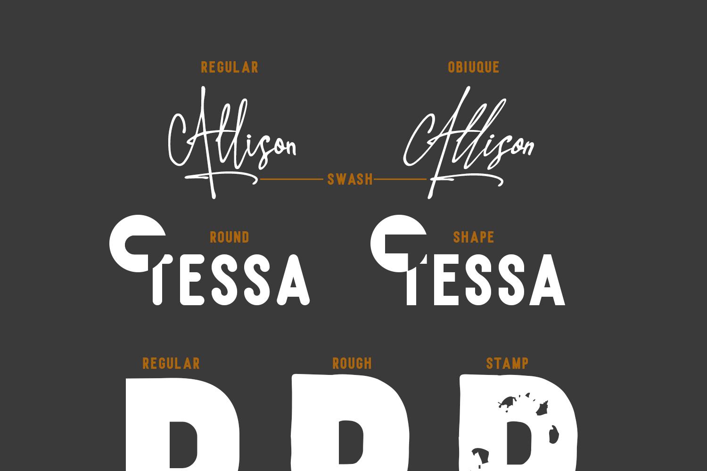 Allison Tessa - Gorgeous Signature example image 8
