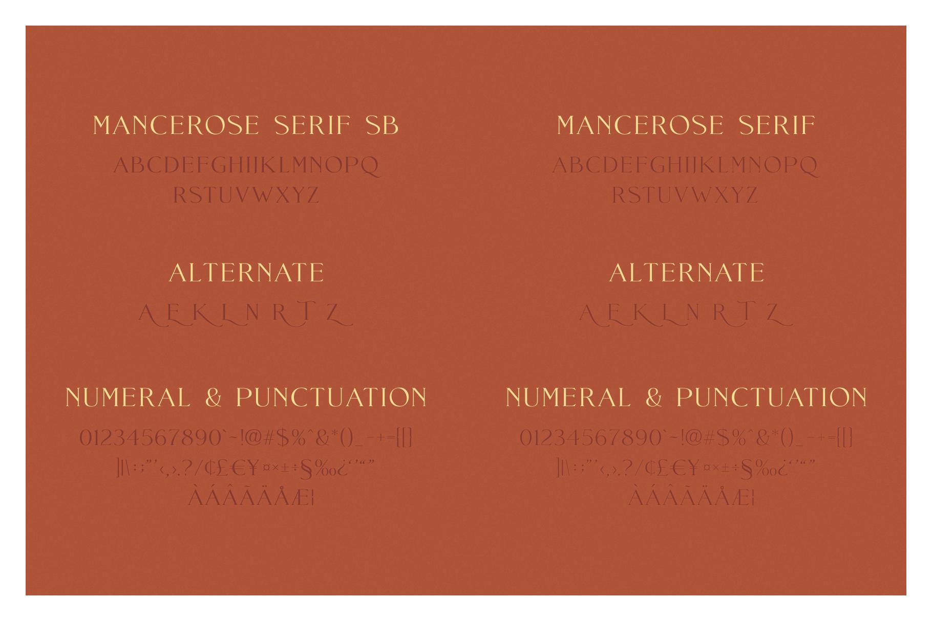 FontDuo | Mance Rose example image 8