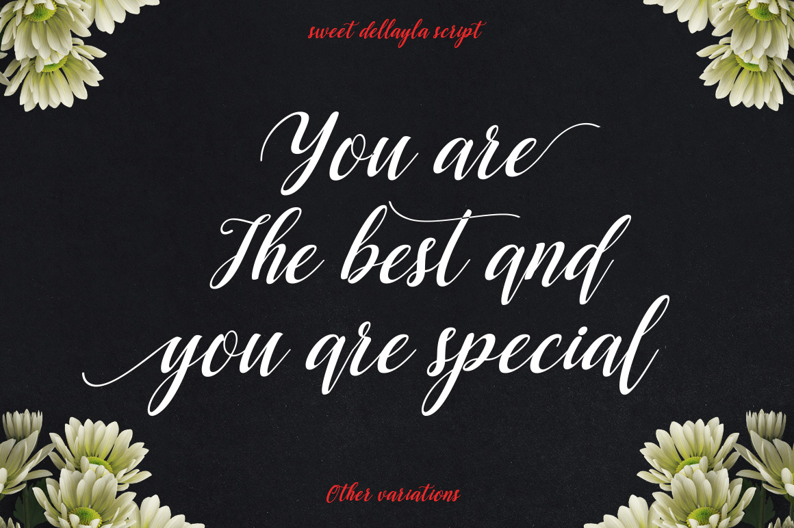 Dellayla Script example image 3