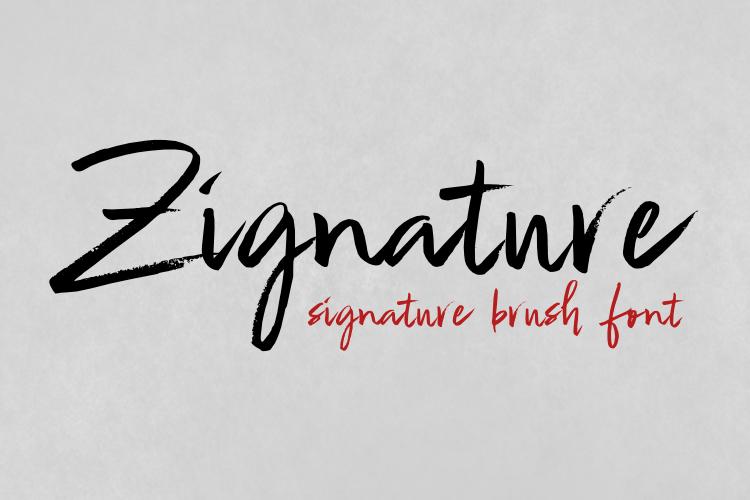 Zignature example image 1