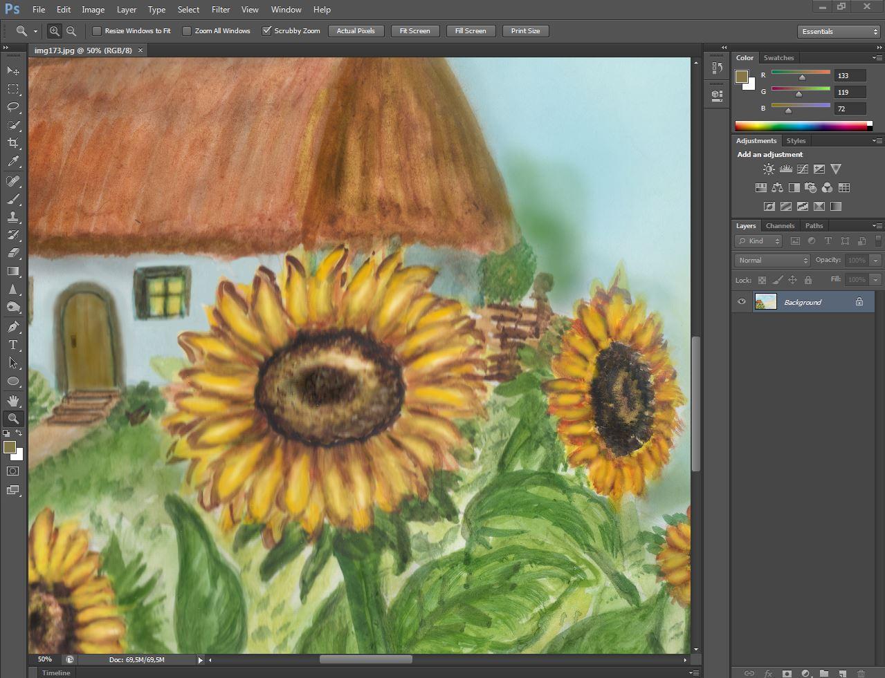 Sunflowers digital paper, set 7 pcs, rustic digital paper example image 2