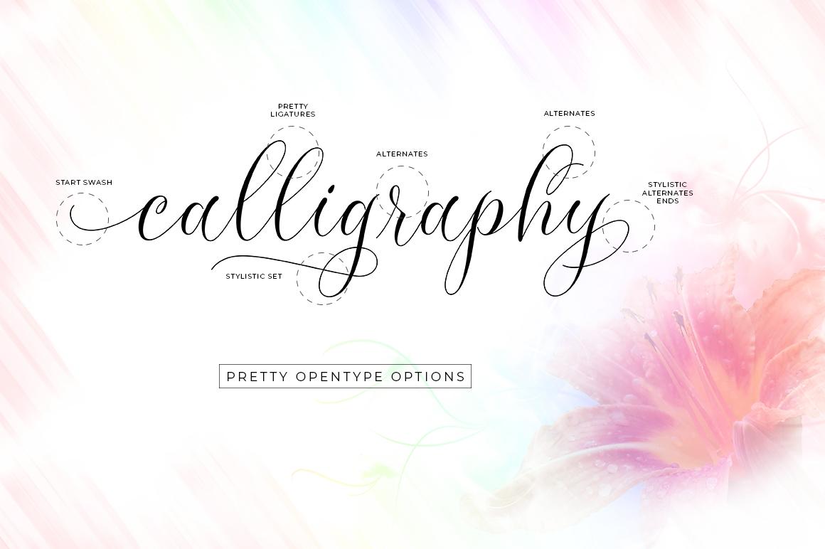 Molandika Script - Elegant Font example image 6