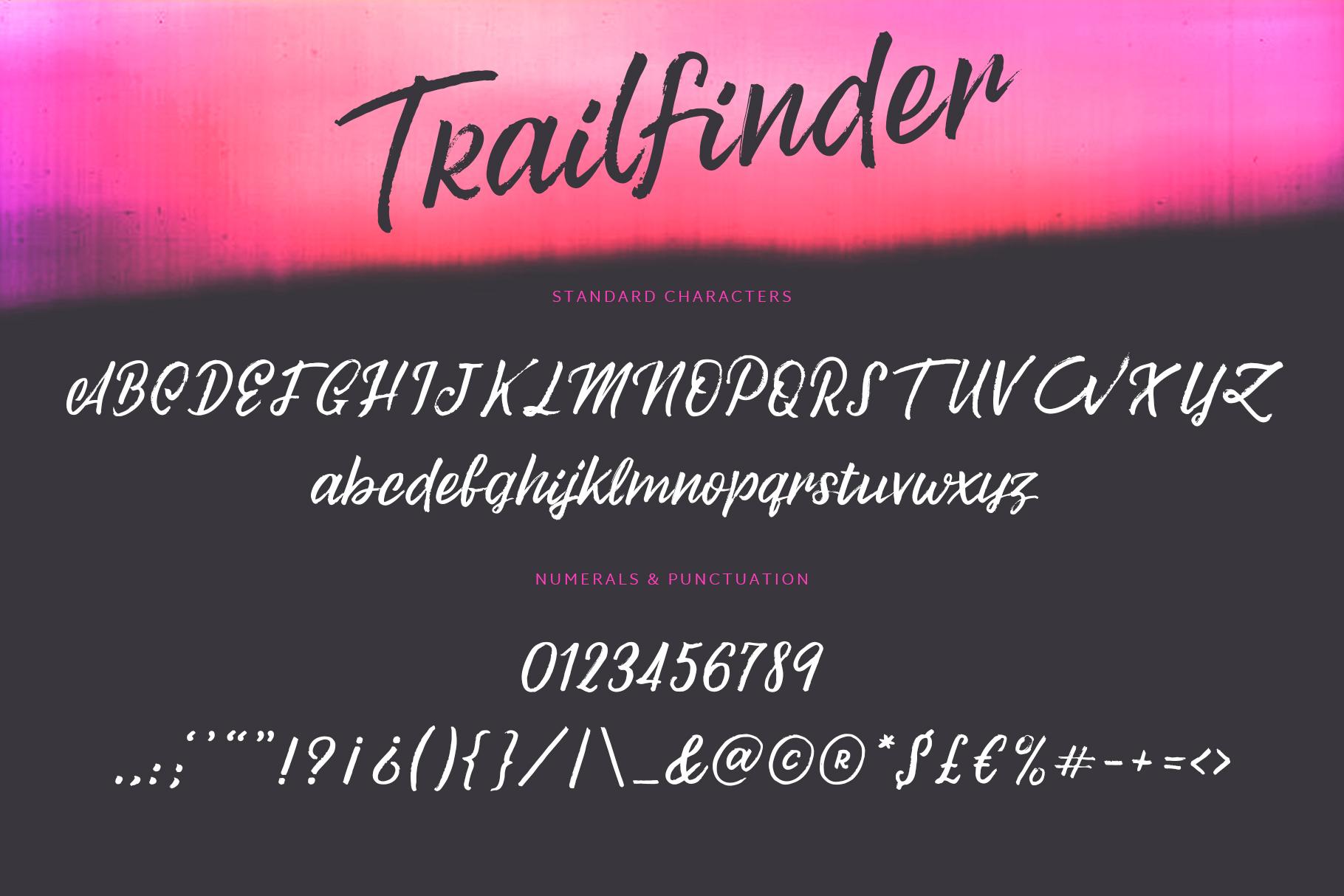 Trailfinder | A Brush Script Font example image 8