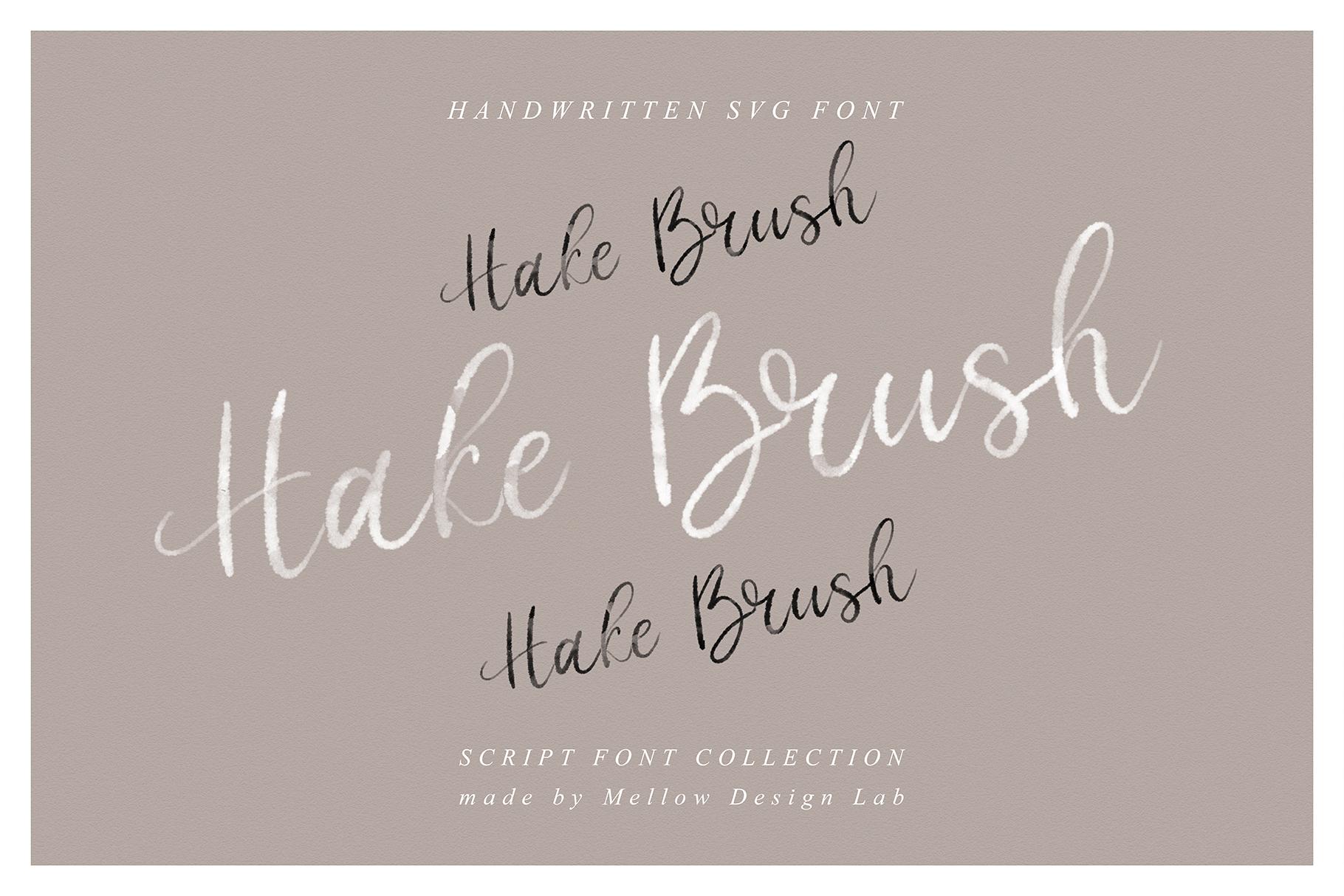 Hake Brush example image 1