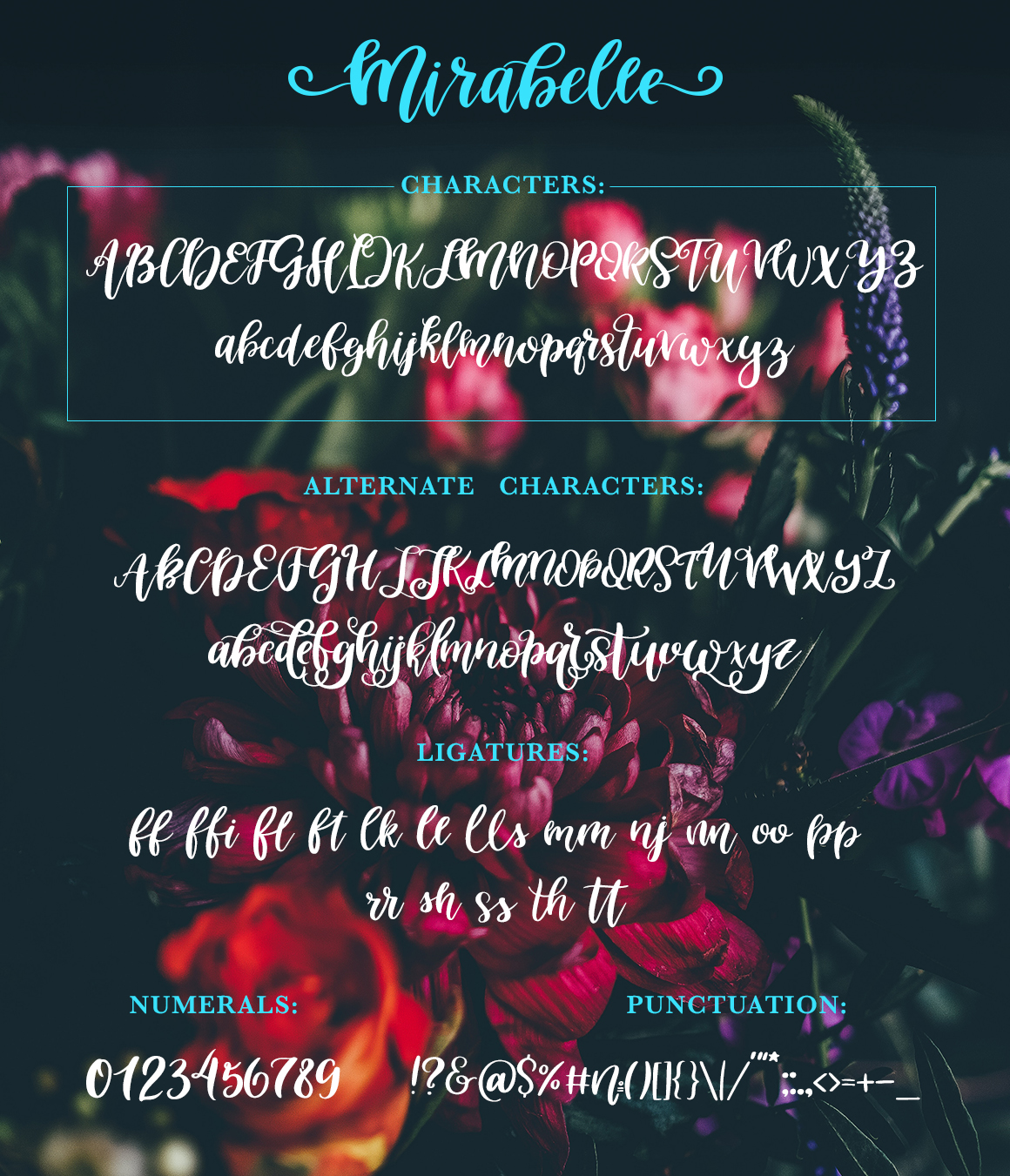 Mirabelle Font with Extras example image 8