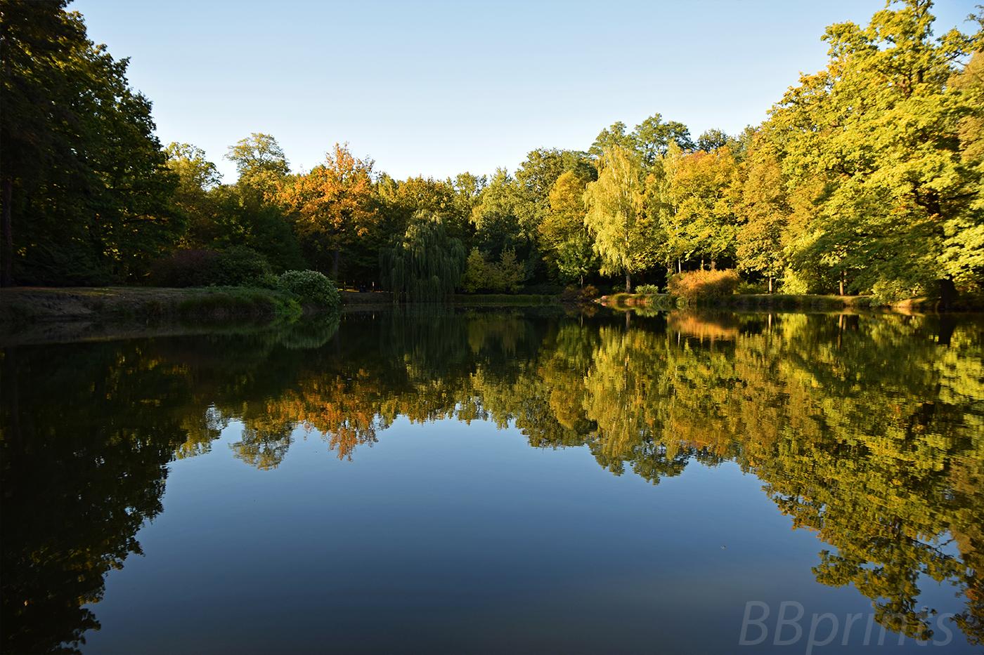Nature photo, landscape photo, summer photo, sunset photo example image 4