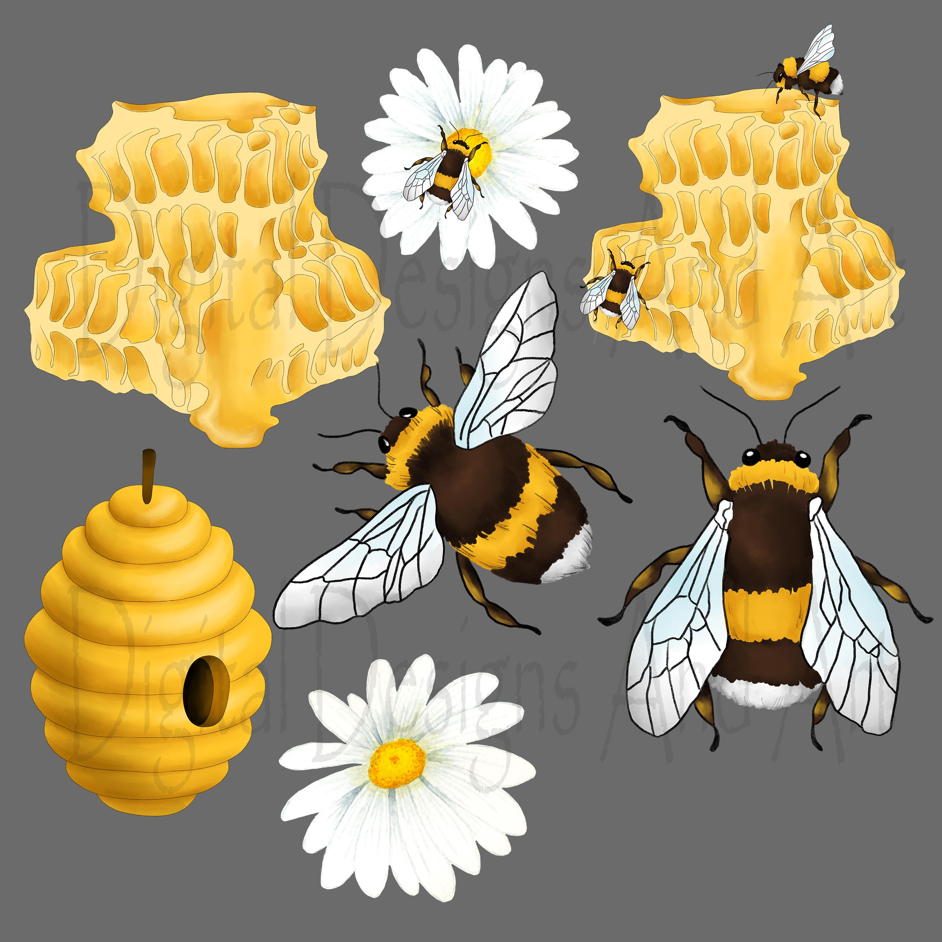 Honey bee clipart example image 4