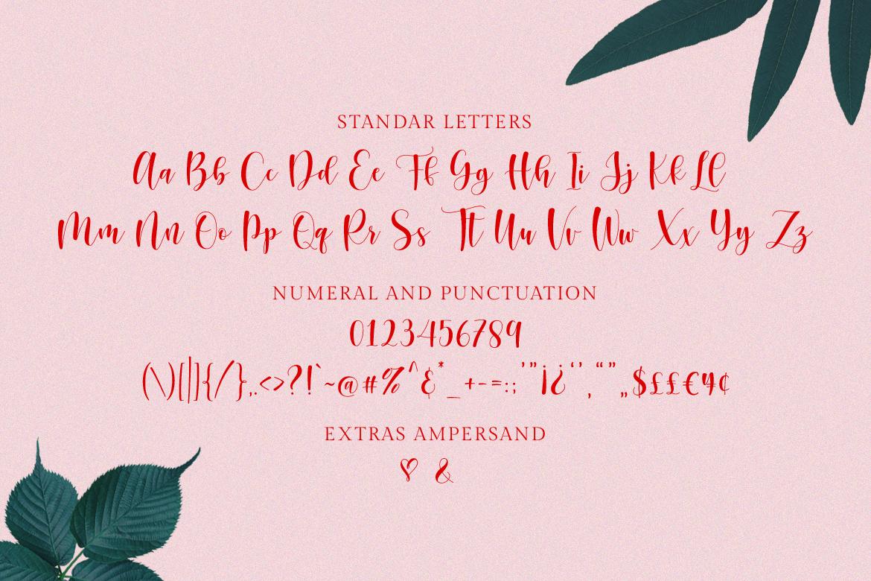 Sunberry | Beautiful Script example image 11
