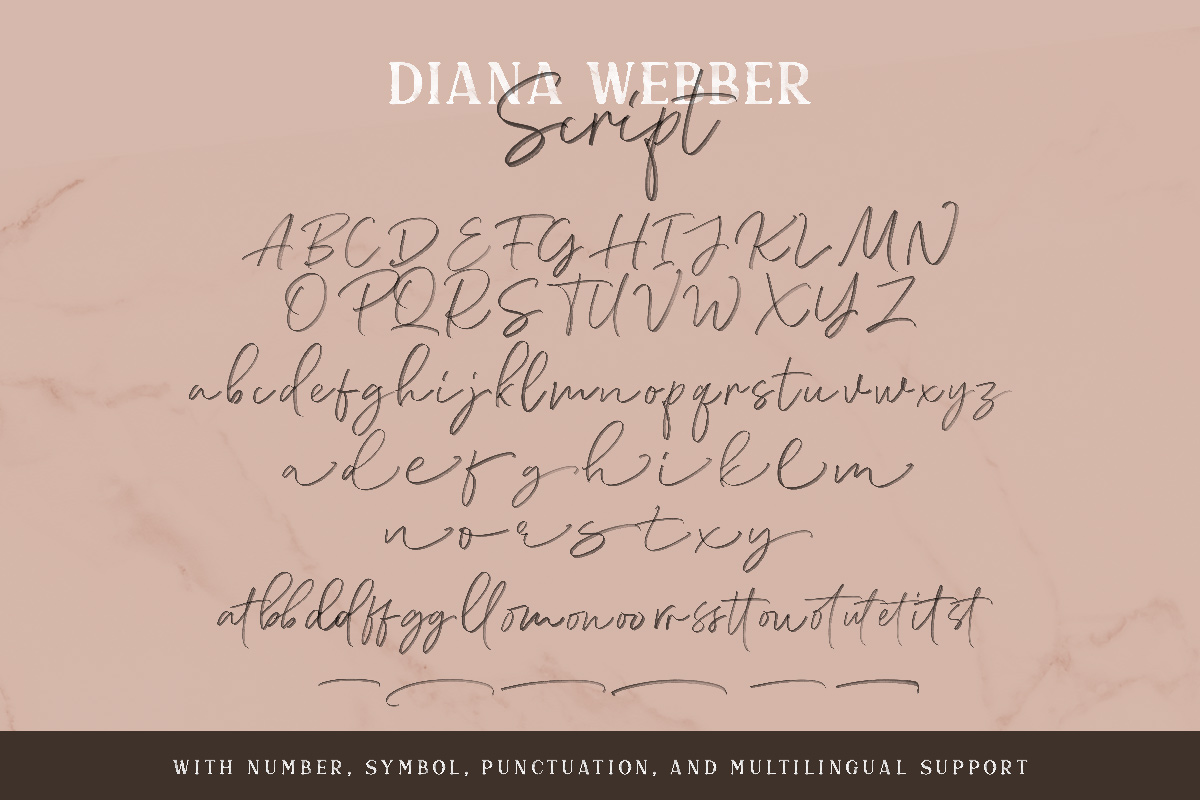 Diana Webber - SVG Font Duo example image 13