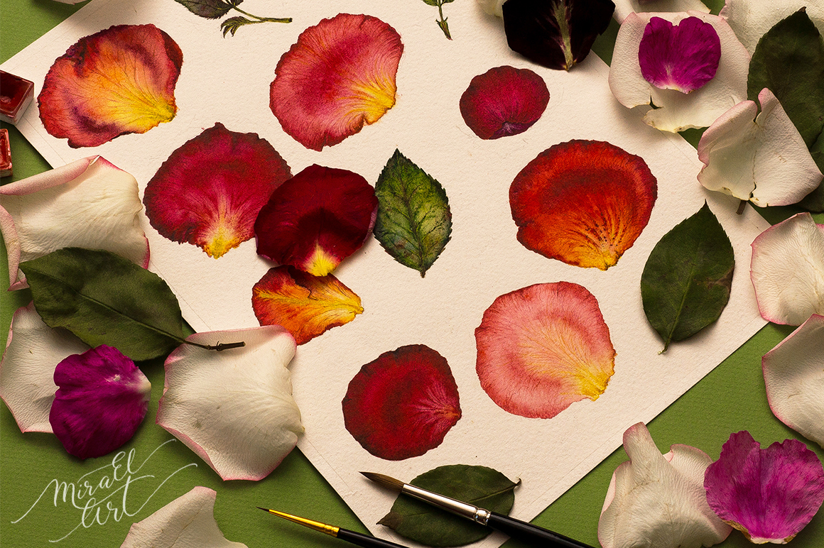 Floral watercolor rose petals example image 8