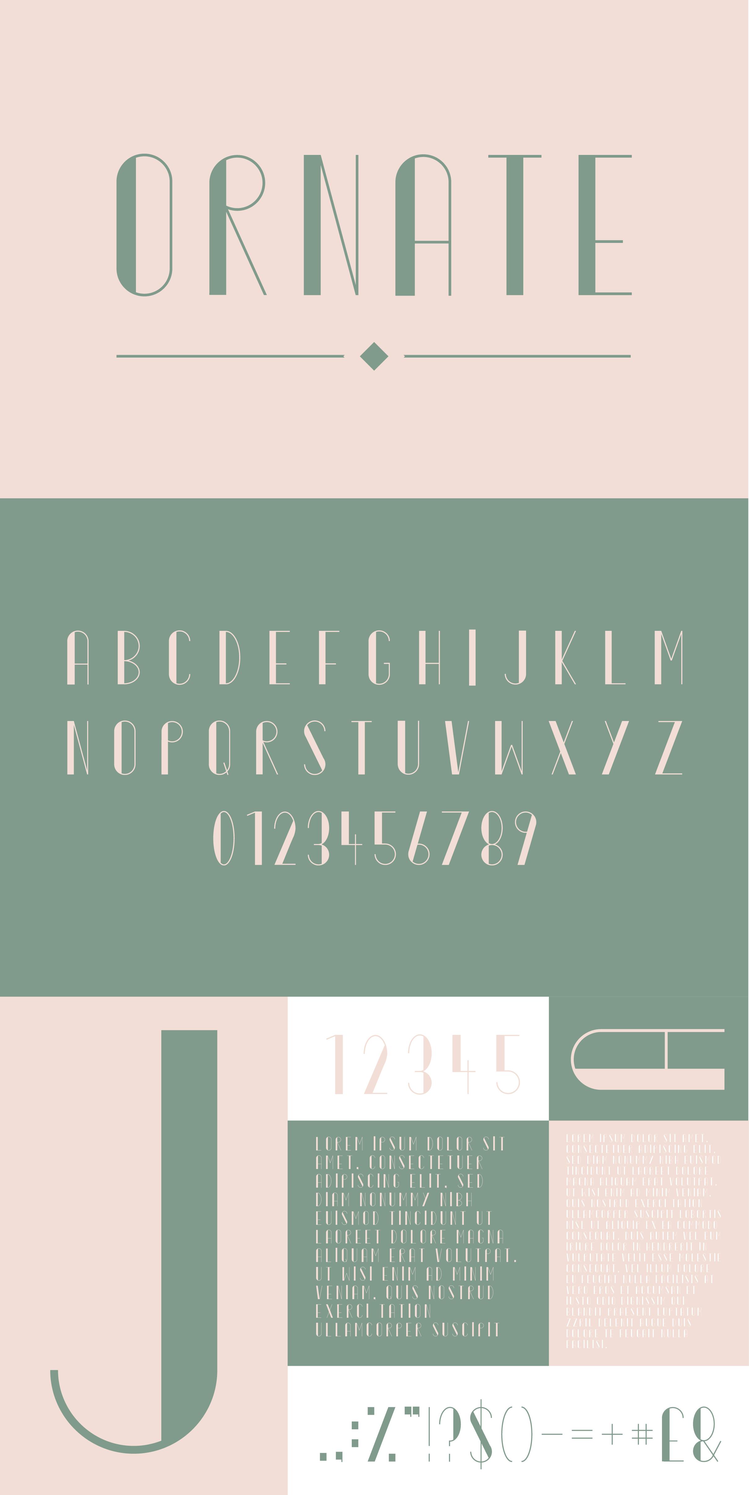 Typeface Bundle example image 7