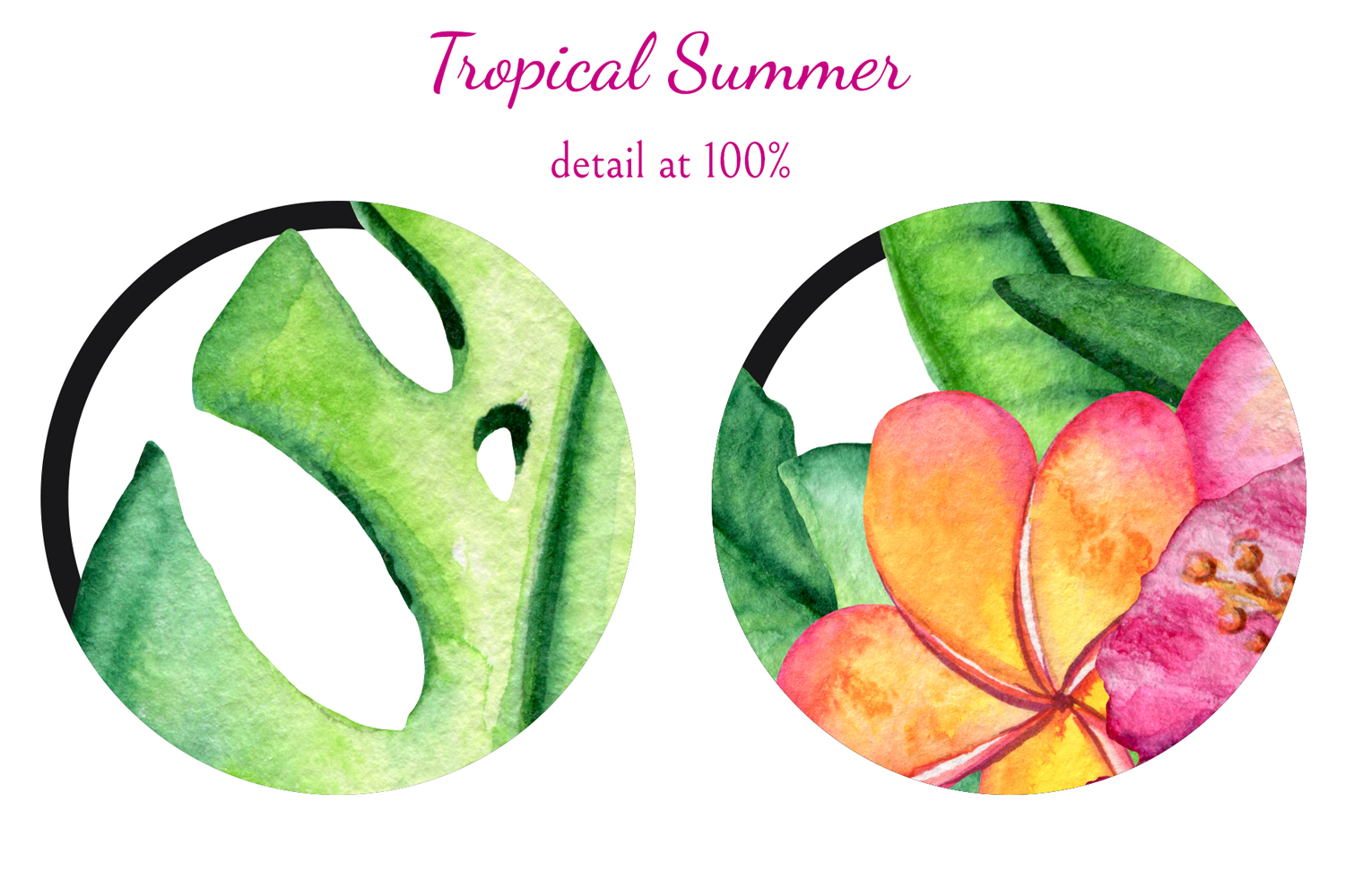 Tropical Summer example image 2
