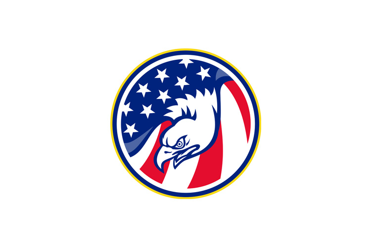 eagle flying american stars stripes flag example image 1
