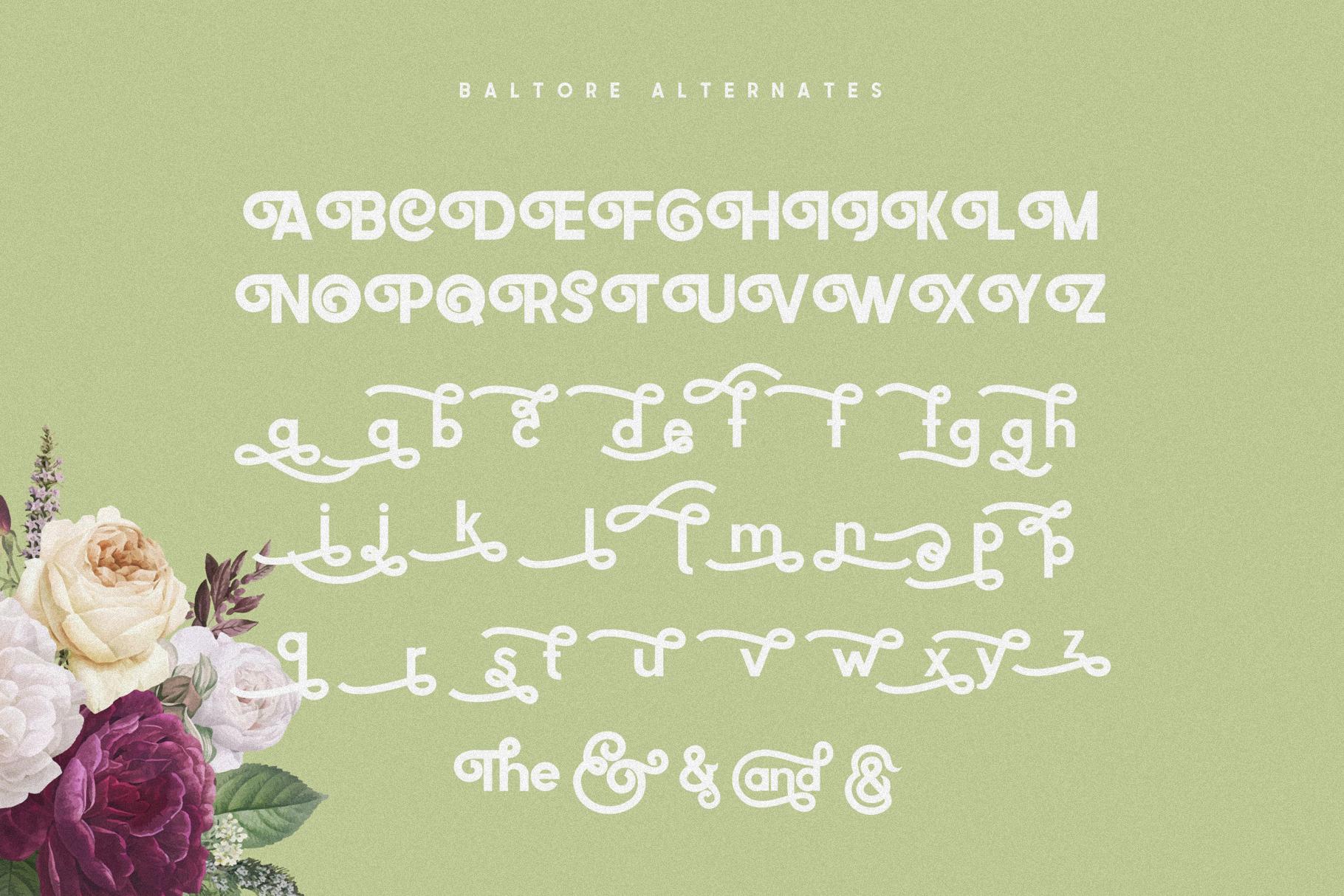 Baltore example image 8