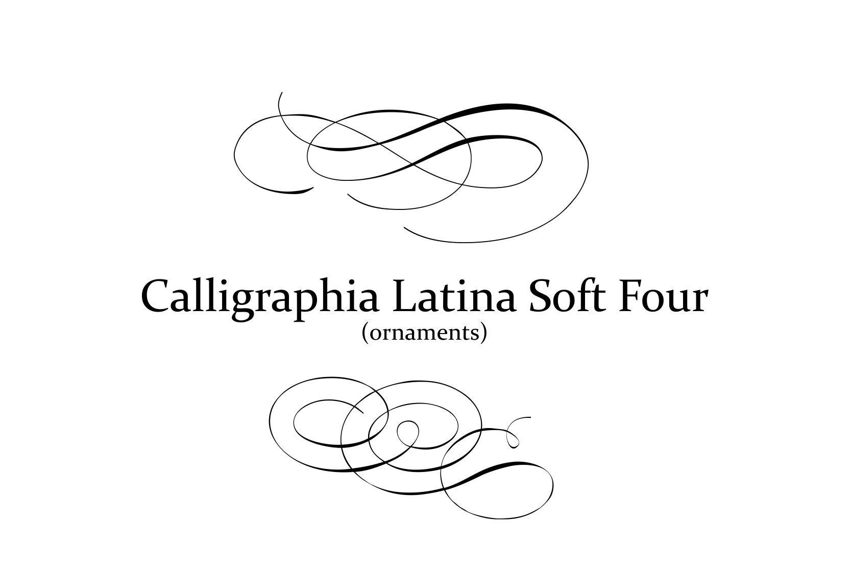 Calligraphia Latina Soft 4 example image 2