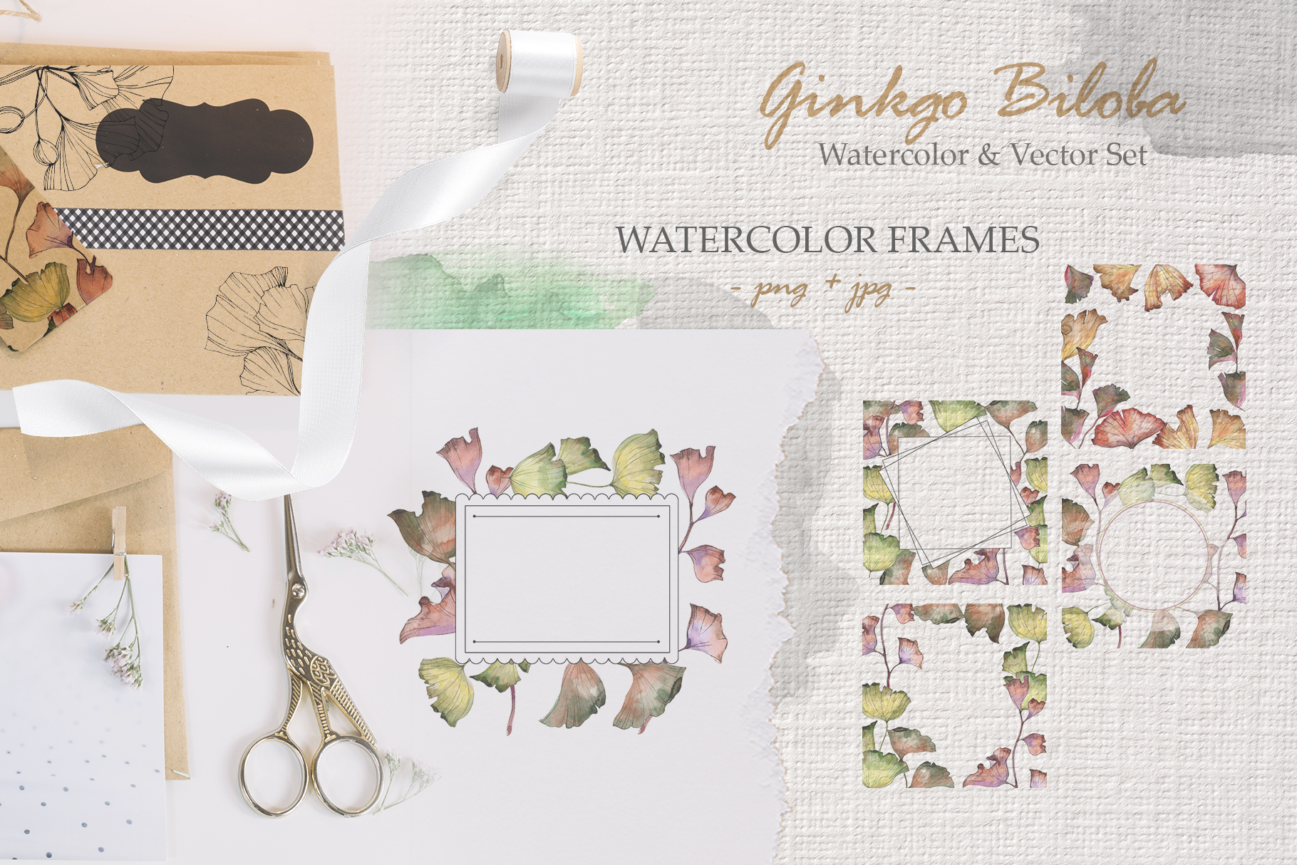 Ginkgo Biloba watercolor and vector set example image 5
