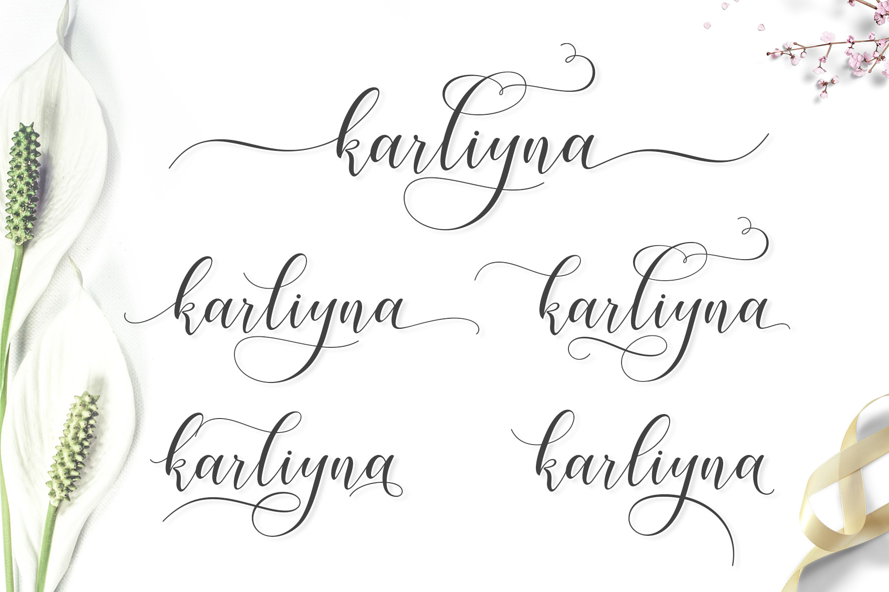 Karliyna Script example image 7