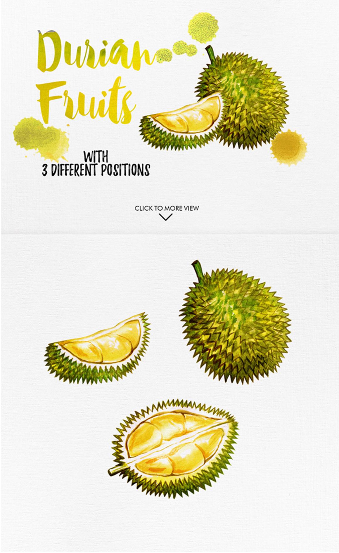 watercolor fruits vol. 6 example image 5