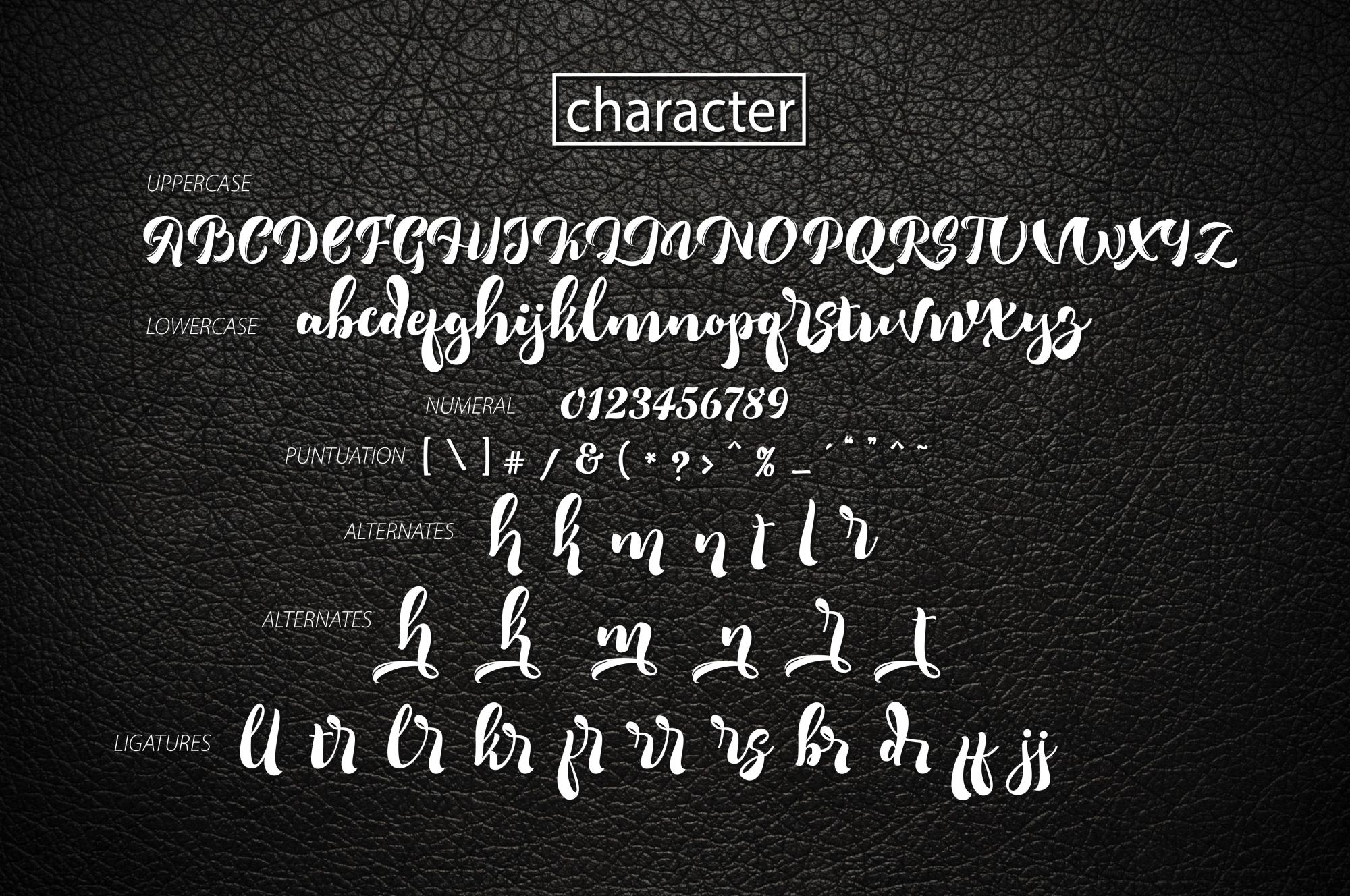 Romero Script example image 4