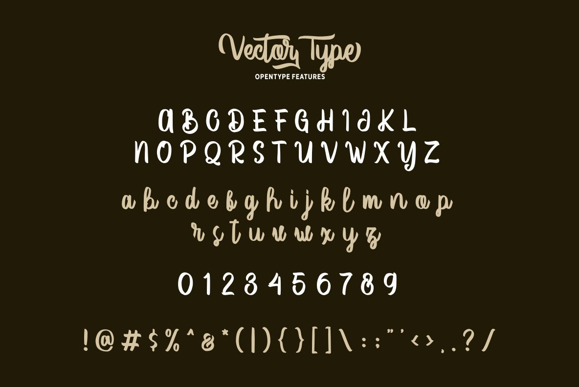 Vector Type example image 4