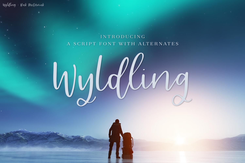 Wyldling Script Font example image 1