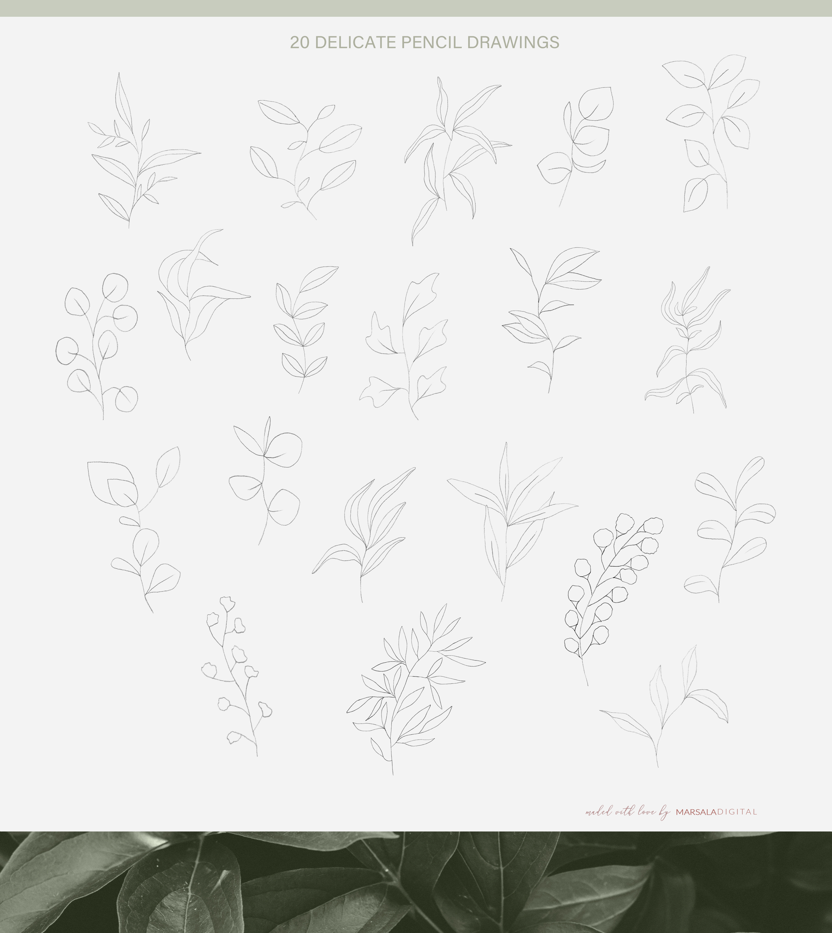 Fine Art Leaves - Pencil Sketches example image 6