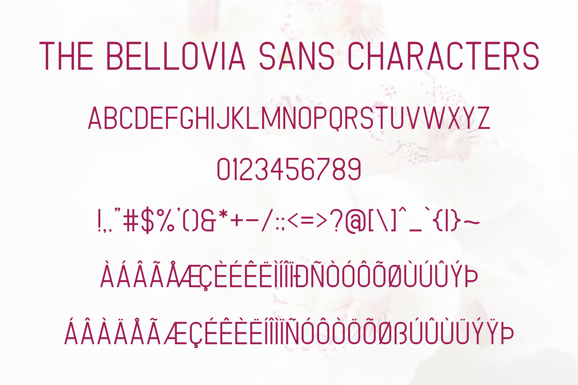 The Bellovia Font Duo example image 12