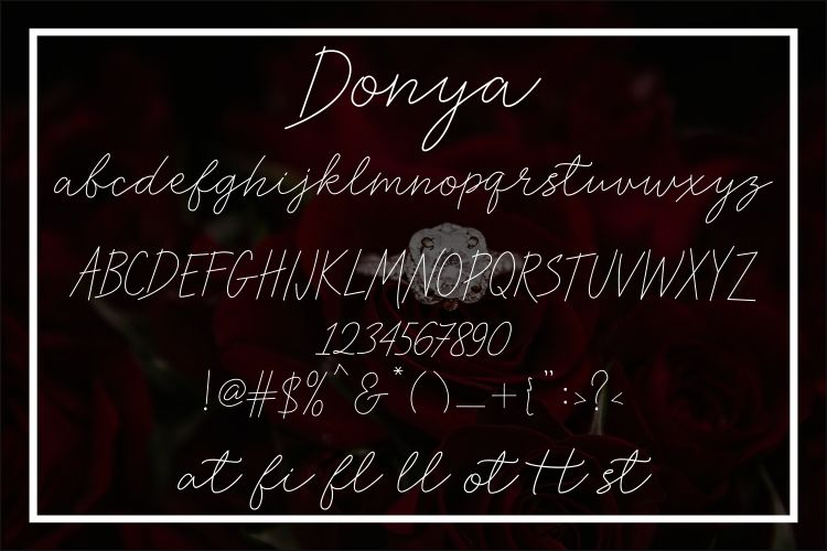 Donya example image 3