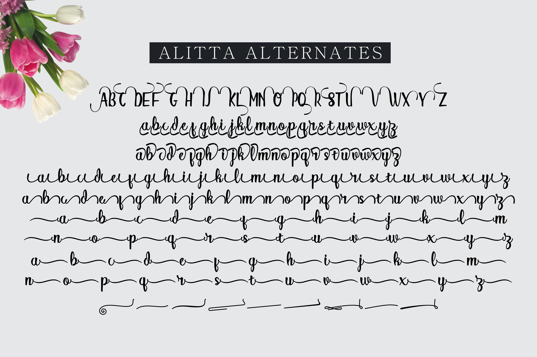 Alitta example image 12