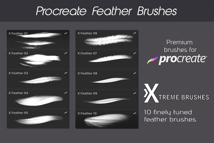 Procreate Feather Brushes example image 2