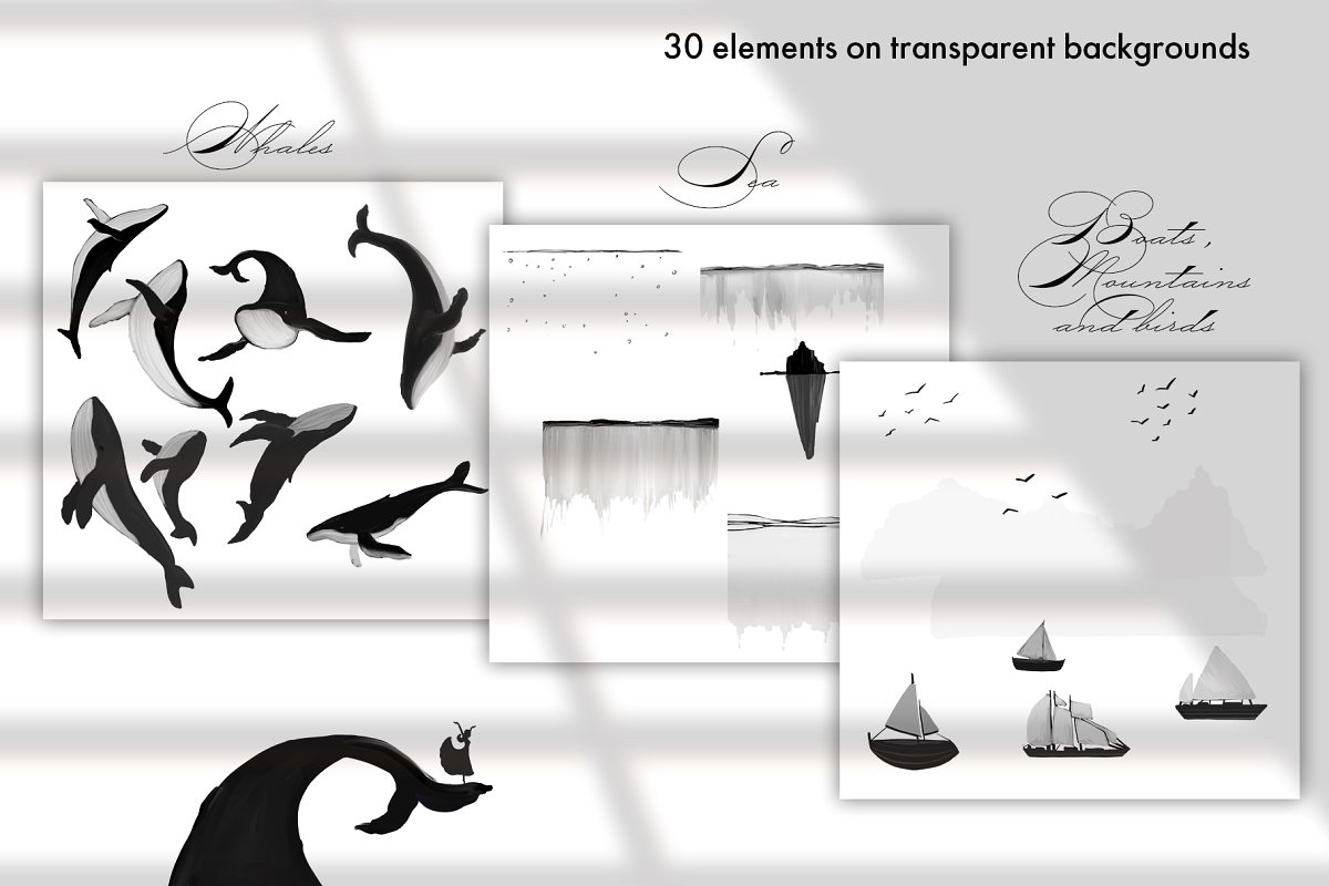 Black&White Whales Illustrations example image 9