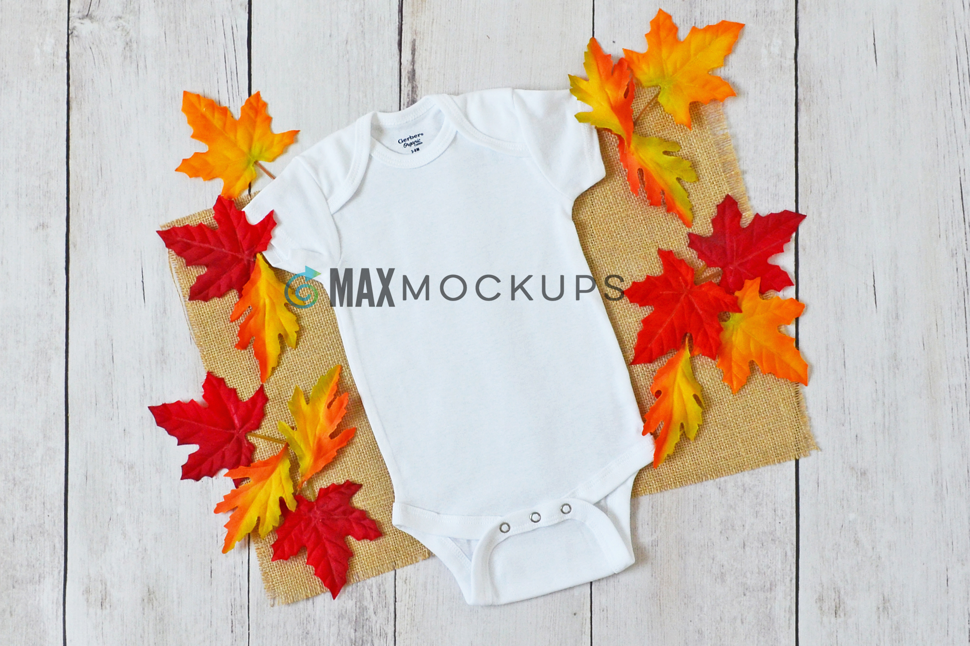 Baby bodysuit Mockup, Fall leaves, flatlay stock photo example image 1