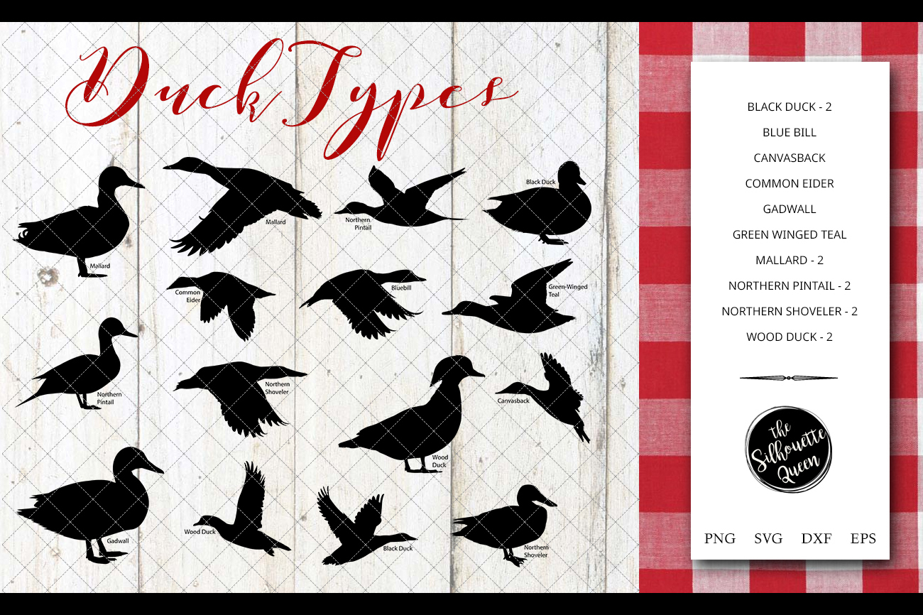 Duck Breeds Silhouette Vector svg file, duck svg cut file example image 1