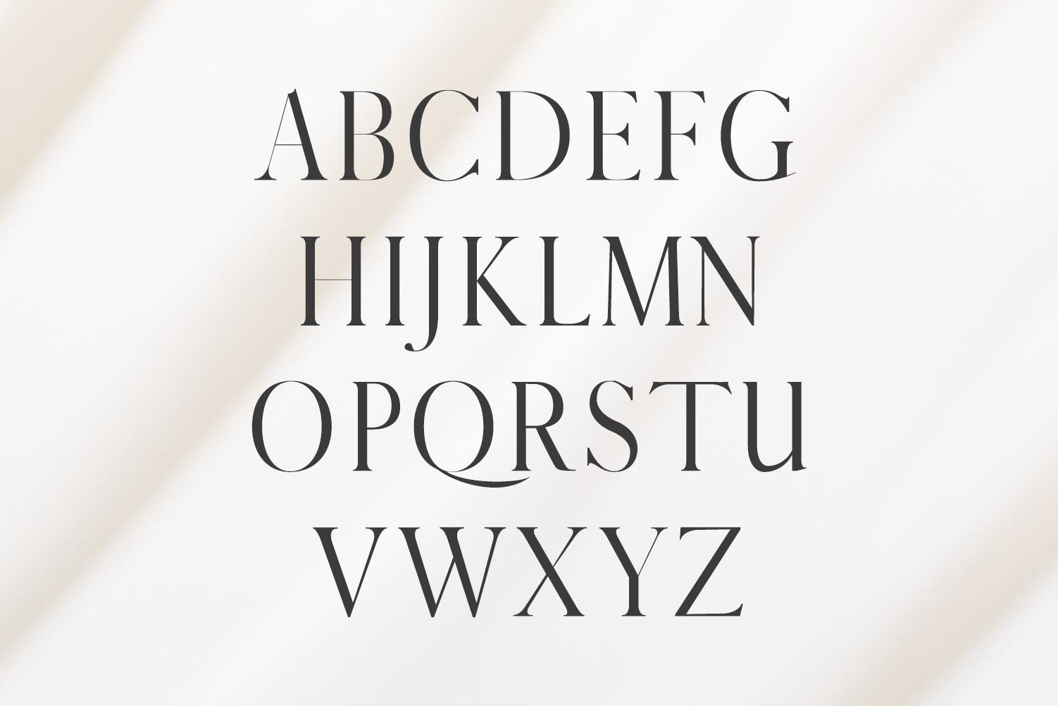 Warick Serif Font Family example image 2