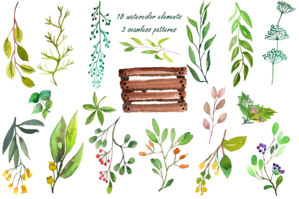 Wilde Herbs Watercolor Set example image 3