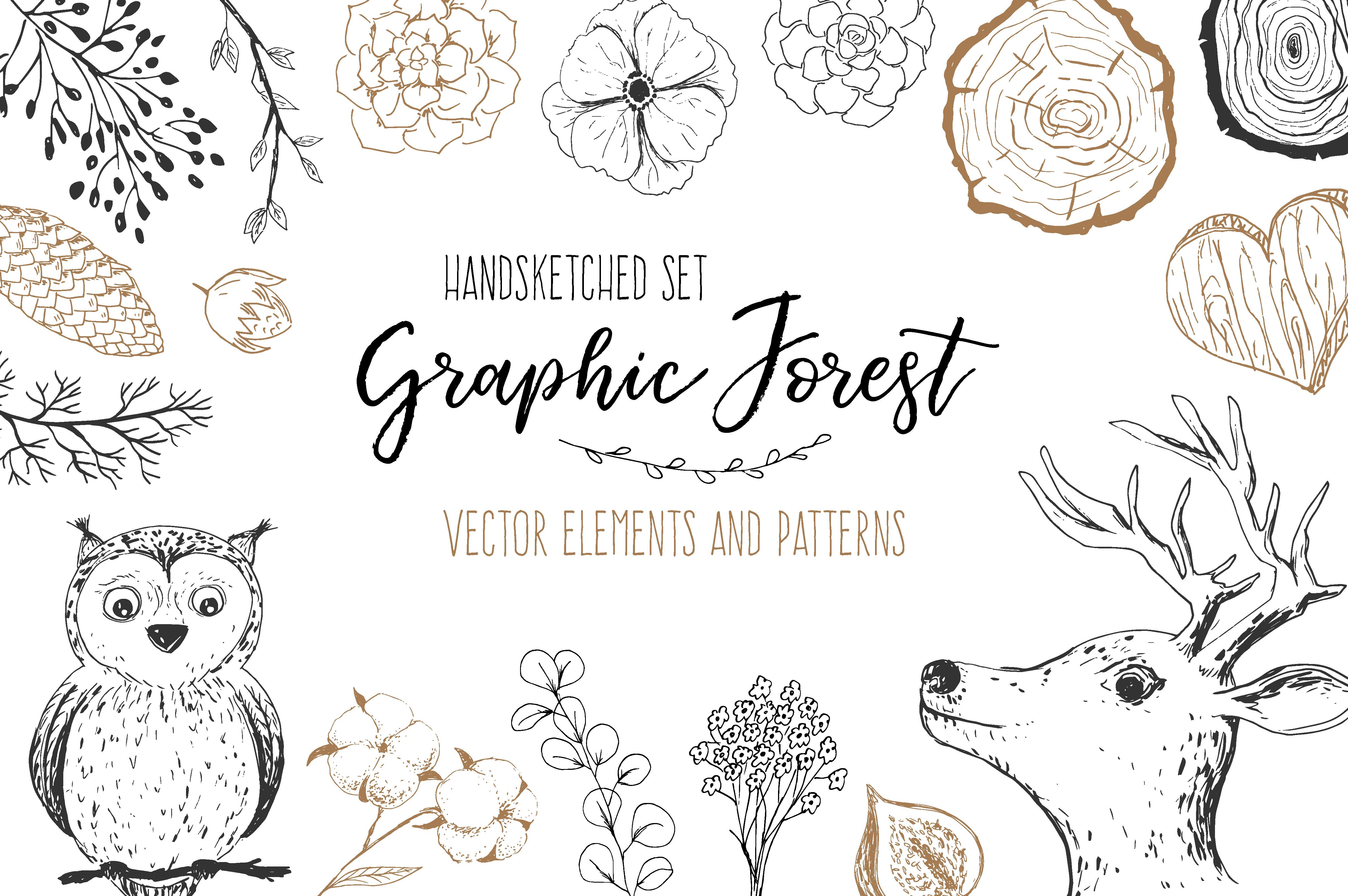 Vector Graphic Forest Collection example image 1