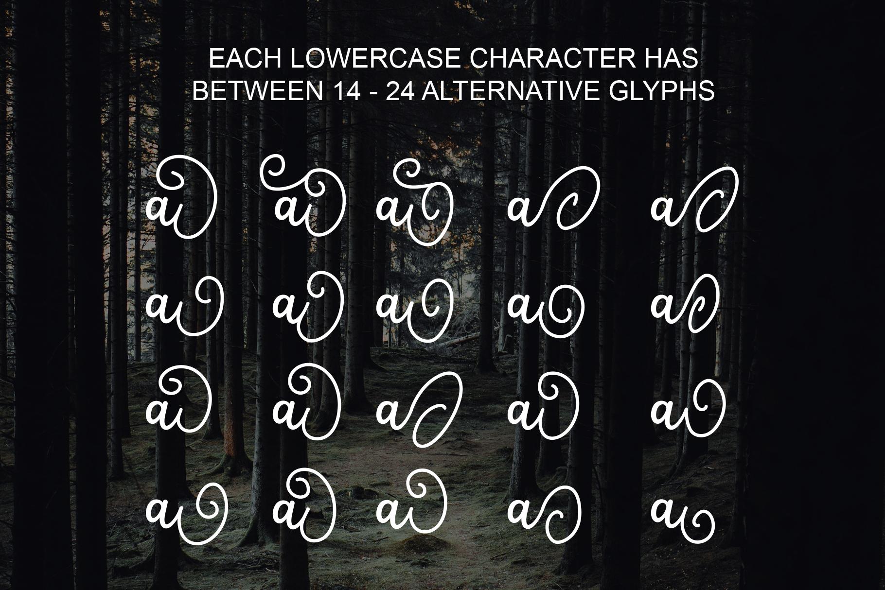 Salahe - a funcy cursive font example image 2