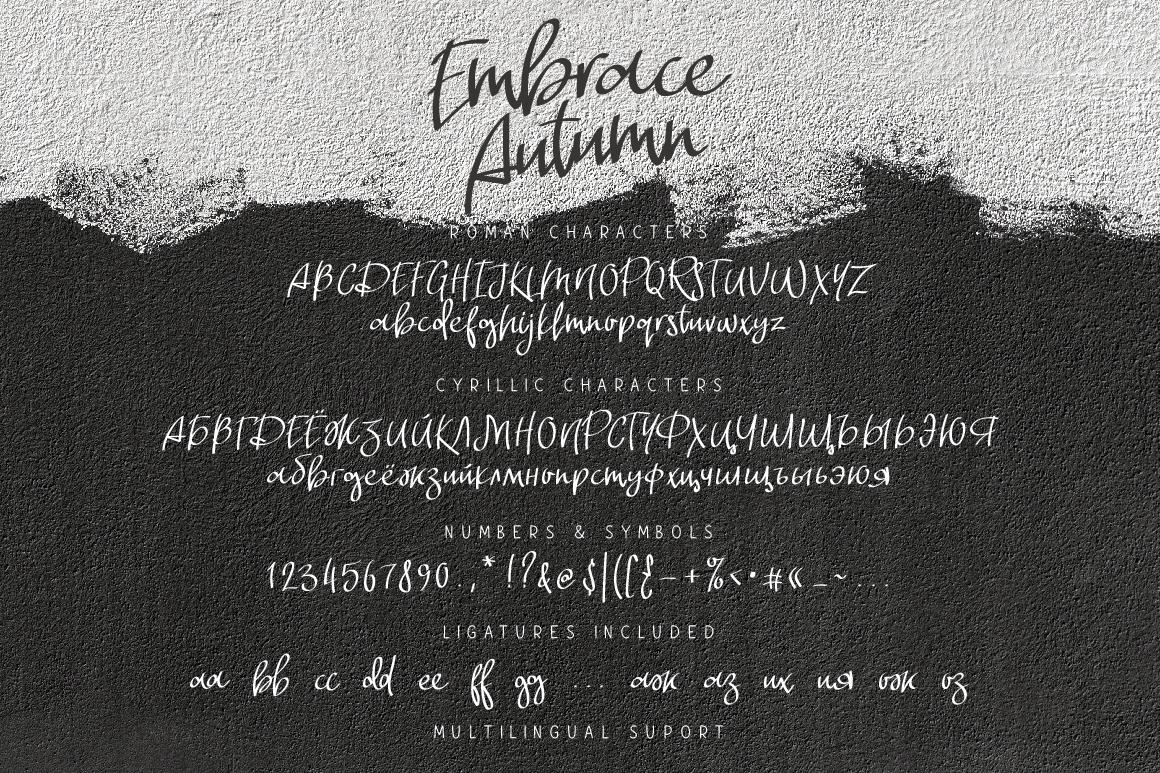 Embrace Autumn example image 7