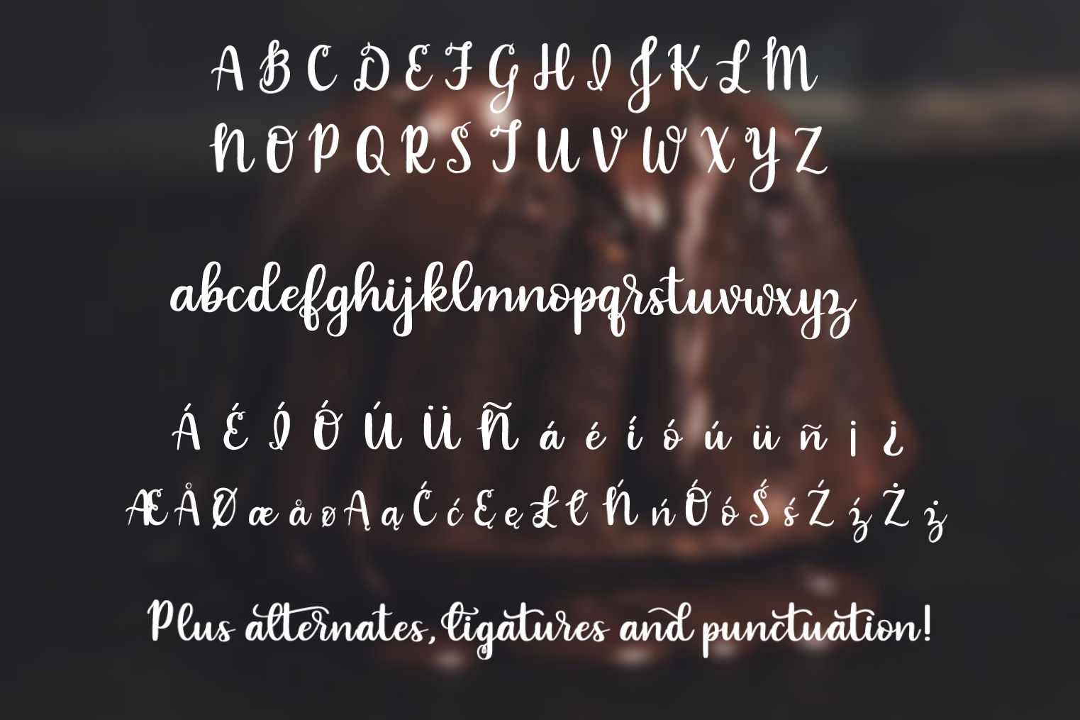 Indulgence - A handlettered script font example image 2