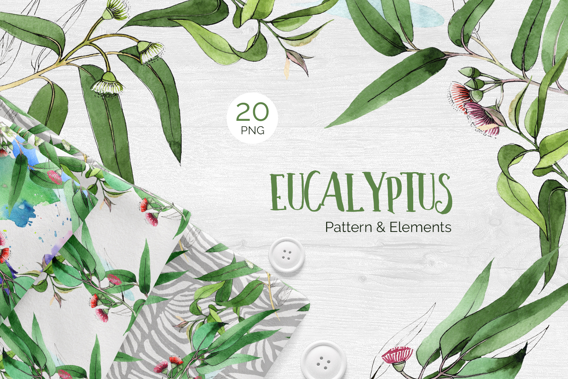 Eucalyptus branch Watercolor png example image 1