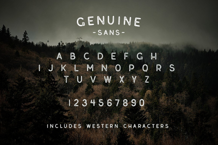Genuine Script - Textured Type Duo example image 4