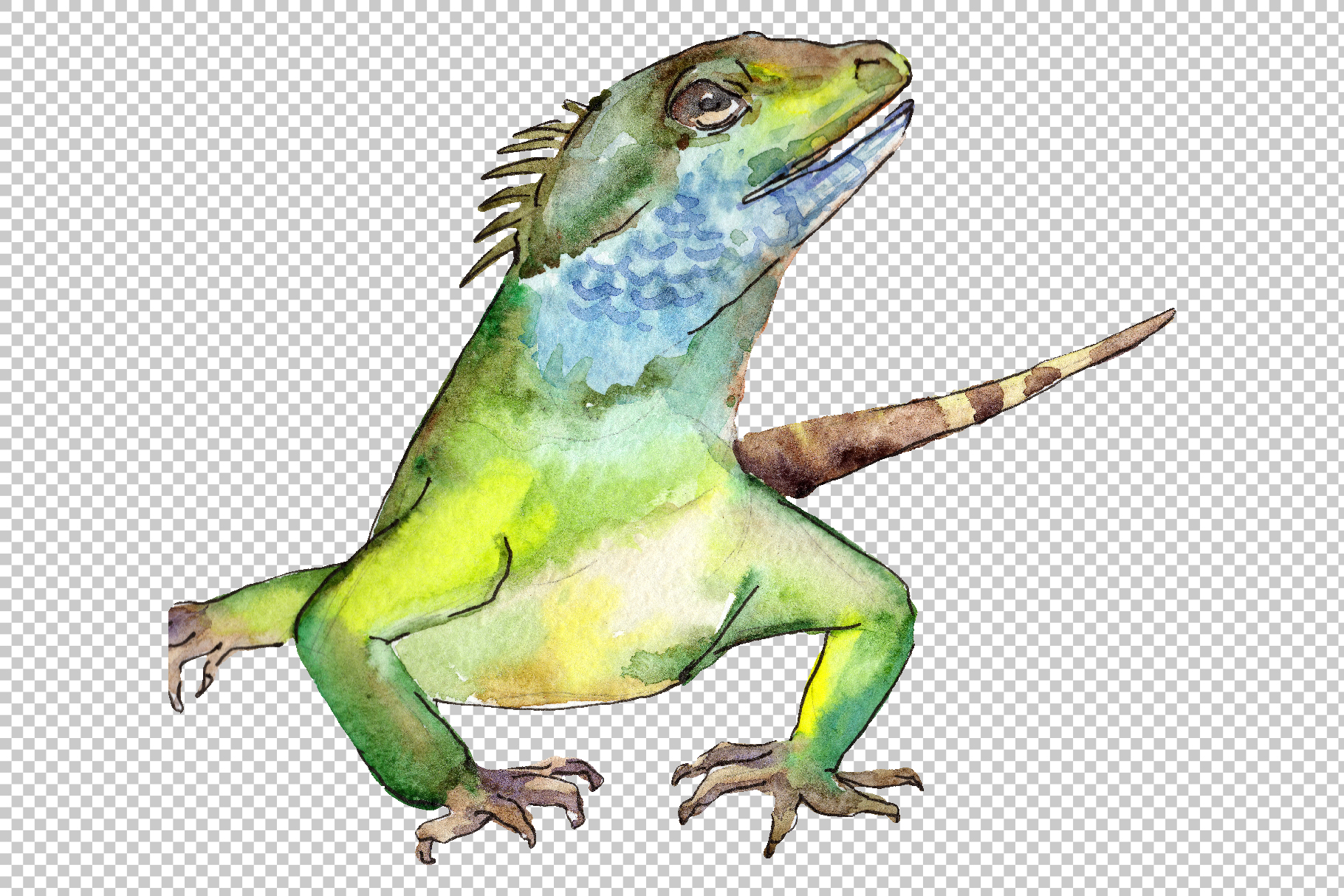 4 iguanas Watercolor png example image 2