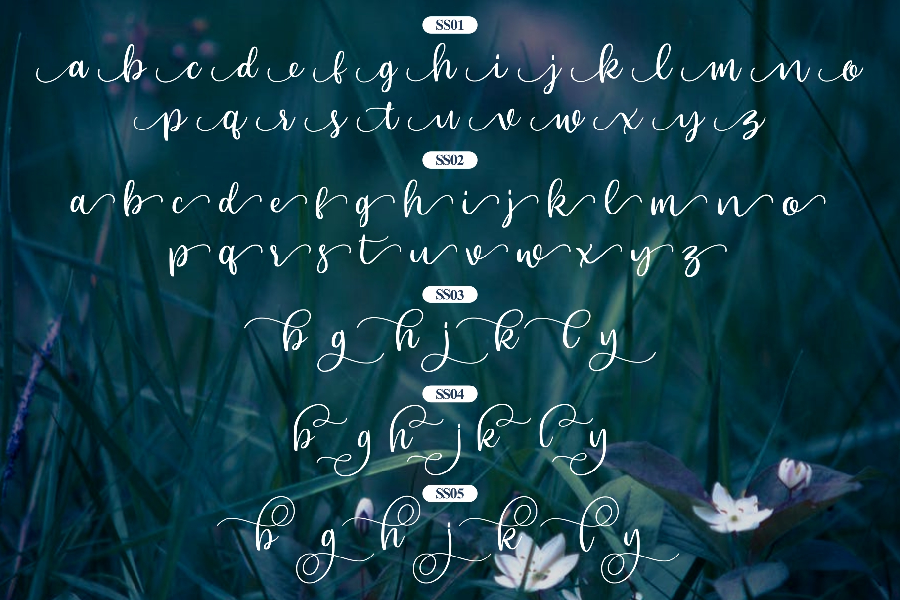 Beyonce - Beauty Font example image 8