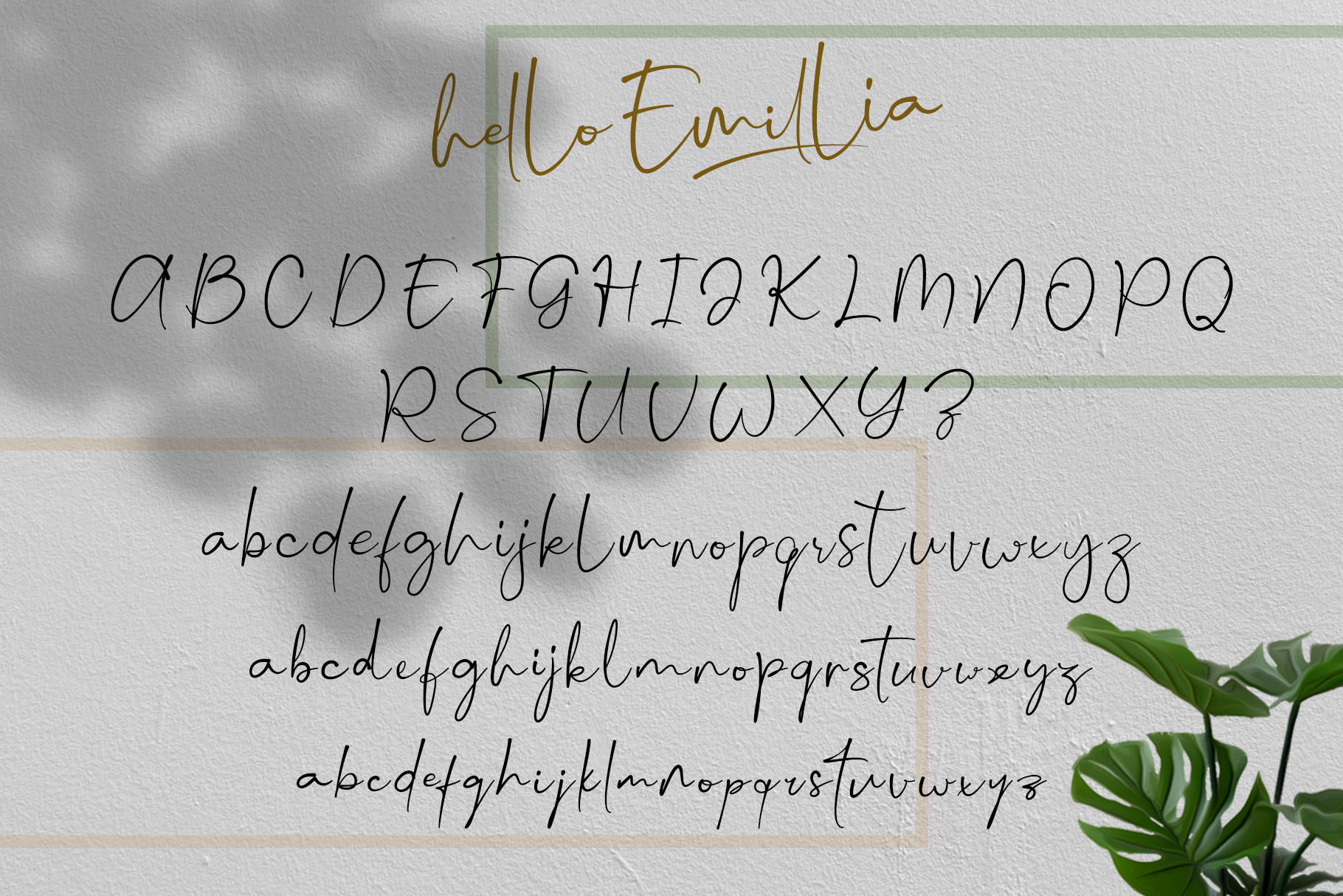 Hello Emillia Script example image 9